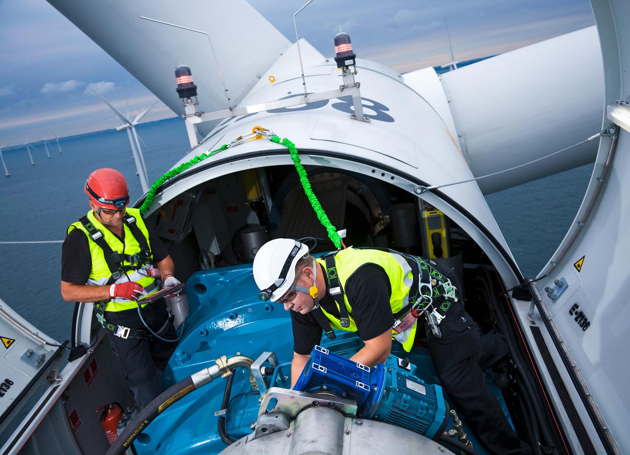 Triển vọng việc làm trong lĩnh vực năng lượng tái tạo