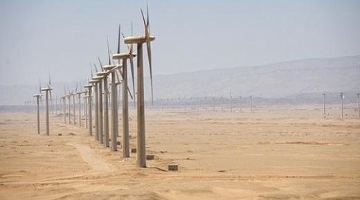 Arập Xê-út mời thầu dự án điện gió khổng lồ