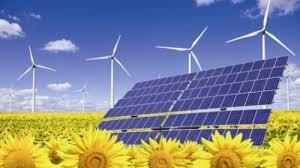 Năng lượng tái tạo, giải pháp tiết kiệm chi phí cho doanh nghiệp