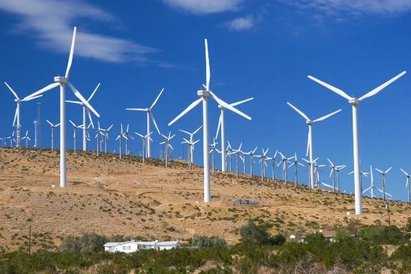Phát triển dự án điện gió 700 MW ở Việt Nam: Tập đoàn Thái Lan nhạy bén hay liều lĩnh?